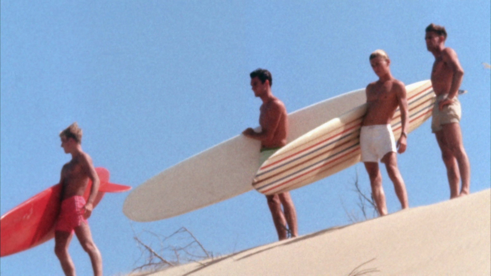the endless summer dune